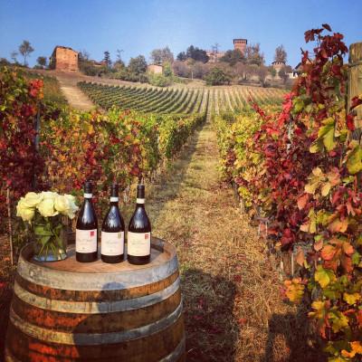 Thumbnail Wine Experience at Castello di Gabiano