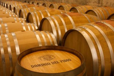 Thumbnail Wine Experience unica presso Dominio del Pidio