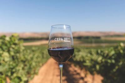 Thumbnail Wine & Bike Experience presso Cepa 21
