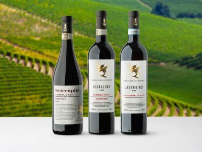 Thumbnail Monferrato wines tasting at Tenuta Santa Caterina