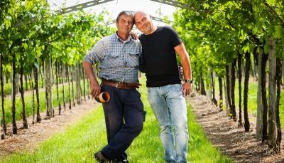 Thumbnail Scriani wine tasting experience close to Verona