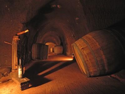 Thumbnail Wine tour & Tasting at Tenuta di Pietra Porzia
