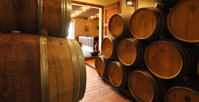 Thumbnail Vernaccia wine tasting discovery at Palagetto Winery