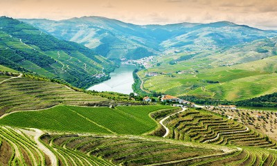 Thumbnail Douro Wine full day tour from Oporto
