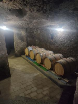 Thumbnail Wine tasting experience at Fuocomuorto Winery
