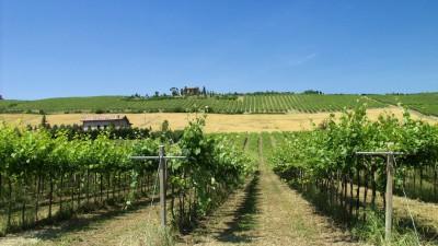 Thumbnail Tenuta Santacroce wine tasting experience