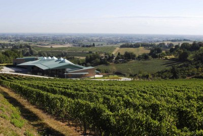 Thumbnail Campo del Sole wine tasting experience
