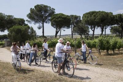 Thumbnail E-bike & Picnic wine tasting at Finca Villacreces