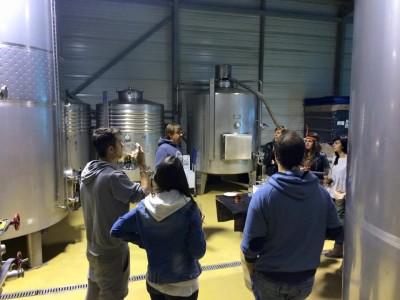 Thumbnail Winery visit and wine tasting at Bodegas Vidular