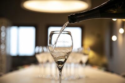 Thumbnail Franciacorta wine tasting at Ronco Calino winery
