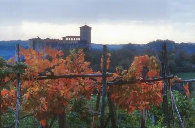 Thumbnail Wine tour at Cascina Piano Winery