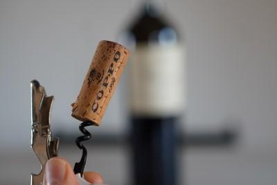 Thumbnail Nizza tour at Coppo Winery