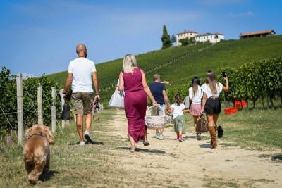 Thumbnail Picnic family basket at Tenuta Carretta