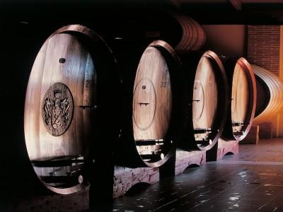 Thumbnail Zenato wine tasting experience