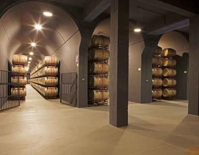 Thumbnail Wine tasting experience at Bodegas Palacio