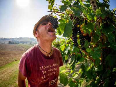 Thumbnail Drinking and dreaming: wine tasting at BES Winery