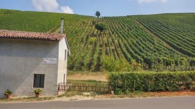 Thumbnail Bricco dei Roncotti wine tour & tasting