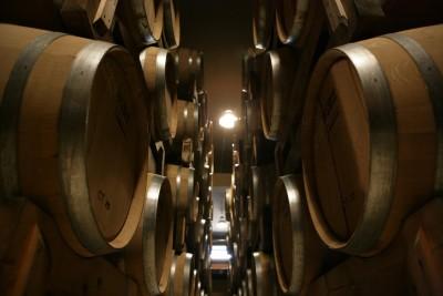 Thumbnail Wine Tasting at Apollonio Winery