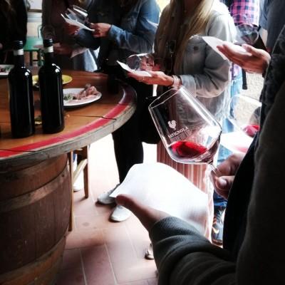 Thumbnail Wine tasting like a sommelier at Savignola Winery