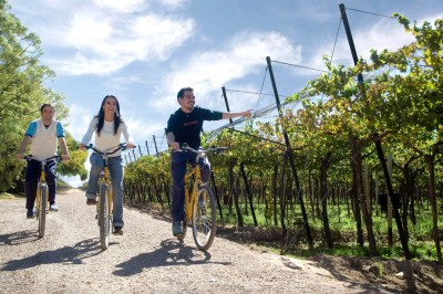 Thumbnail Wineries by Mountain Bike from Mendoza