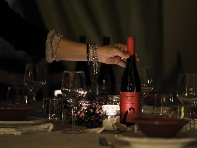 Thumbnail Happy wine day experience at Capurso wine close to Verona
