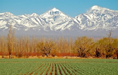 Thumbnail Private Full Day Wine Tour & Lunch from Mendoza