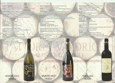 Thumbnail Wine tasting alla scoperta della Cantina Valdrighi nei pressi di Lucca