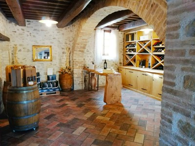 Thumbnail Wine tasting in an old mill in the heart of Umbria