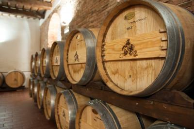 Thumbnail Usiglian del Vescovo wine tasting