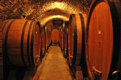Thumbnail Classic Chianti wine tasting experience at La Castellina Winery