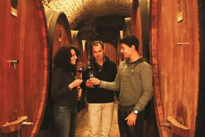 Thumbnail Light lunch and Chianti wine tasting at Castellina Winery
