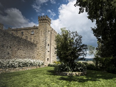 Thumbnail Wine tasting Cantine Aliani & Castello di Ramazzano