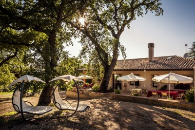 Thumbnail Winemaker for a day: Tour of an organic family winery