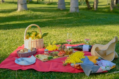 Thumbnail Picnic on the lawn among wine, typical products and nature