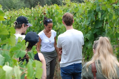Thumbnail Old Roman Wine Tour at Monte Cecubi