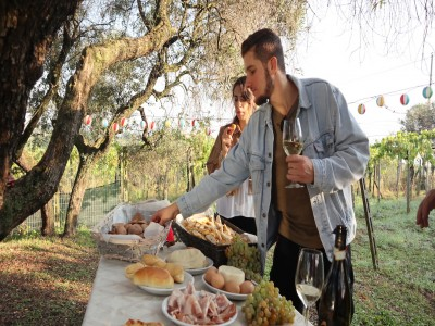 Thumbnail Wine breakfast with a wine maker close to Rome