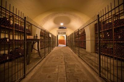 Thumbnail Wine tour Classico della Tenuta Capezzana