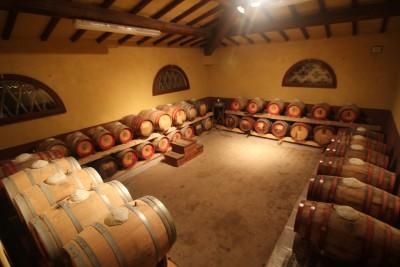Thumbnail Wine tour alla scoperta della Tenuta Capezzana