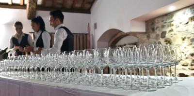 Thumbnail Large wine tasting at Marina Danieli Estate
