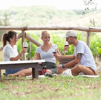 Thumbnail Picnic among the vineyards at Tenuta Casadei