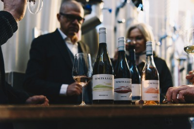 Thumbnail Virtual tasting: A professional winemaker and a professional taster for you