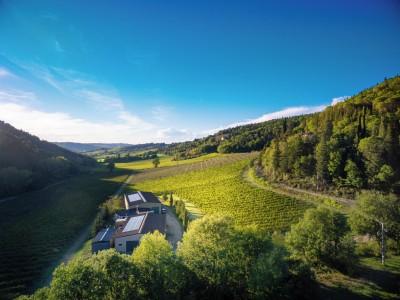 Thumbnail Wine tour classico presso Carus Vini