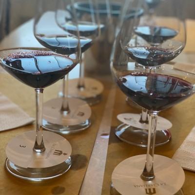 Thumbnail INTRODUCTION TO WINE: qualities & faults. Wine making, tasting, service and food at La Ciarliana