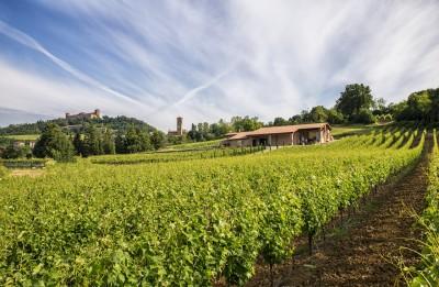 Thumbnail Shades of Pinot noir at Finigeto