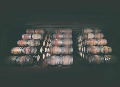 Thumbnail Premium wine tasting tour at Conti Zecca