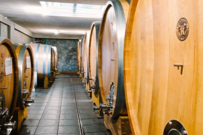 Thumbnail Wine tour and tasting experience at Tornatore