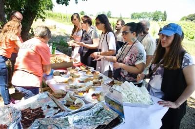 Thumbnail Wine tour and food pairing experience at Vini Di Filippo