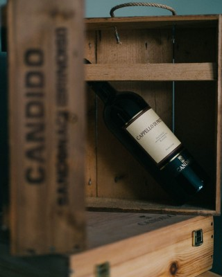 Thumbnail Wine tasting at Candido wines in Salento
