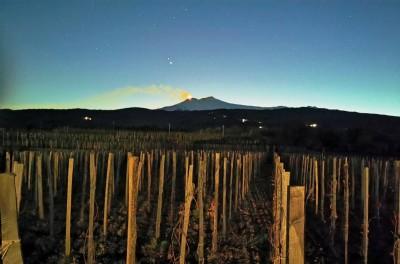 Thumbnail Wine tasting and aperitif at Emilio Sciacca