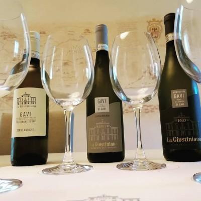 Thumbnail The history of Gavi at La Giustiniana Winery
